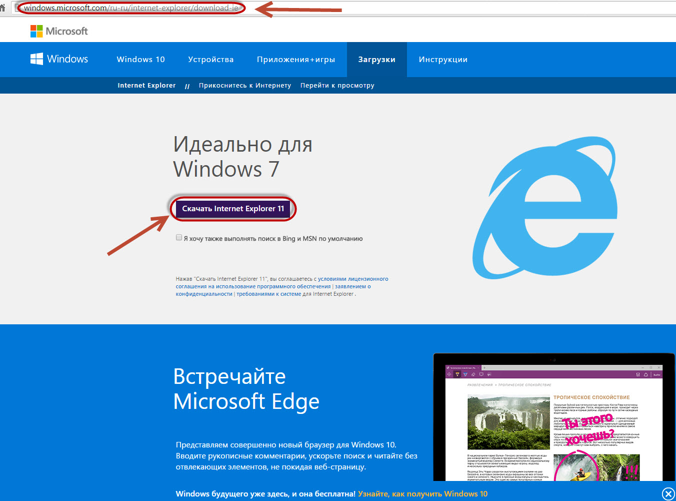 Put safety first robust new internet explorer 7 architecture and improved security features help protect you against